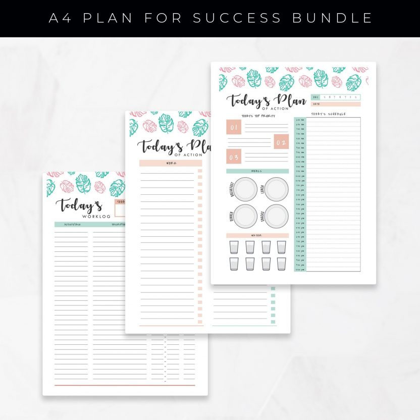 Productivity & Success Planner 24 in 1 – Mint