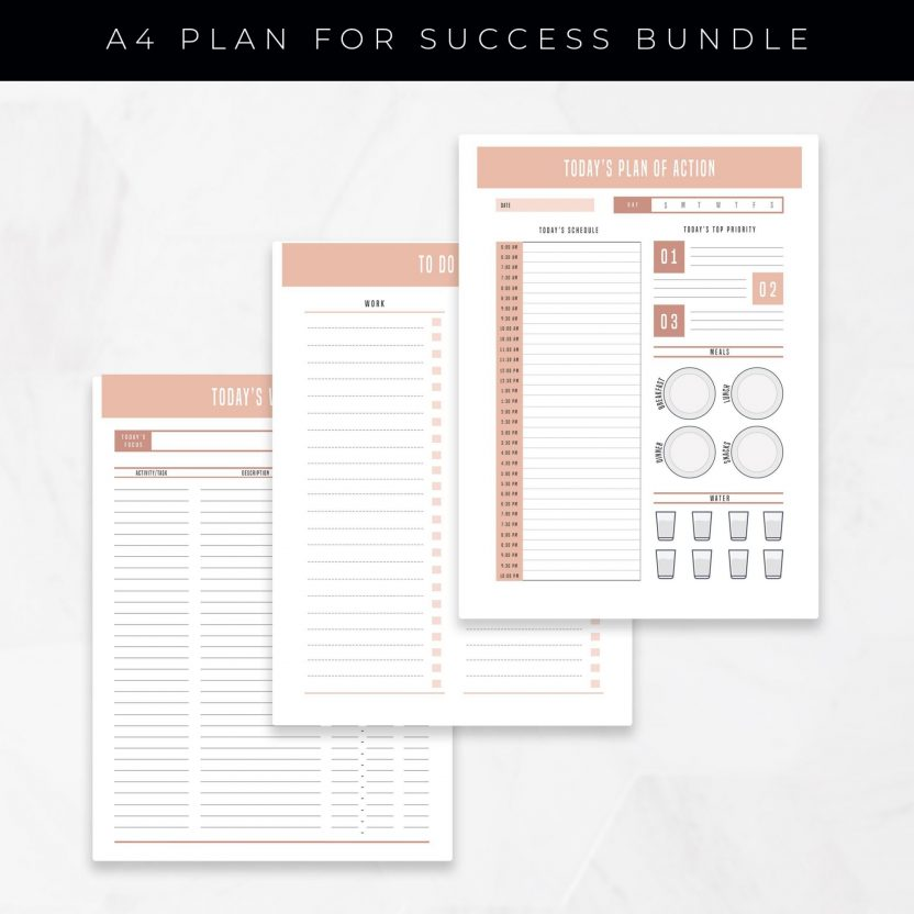 Productivity & Success Planner 24 in 1 – Pink