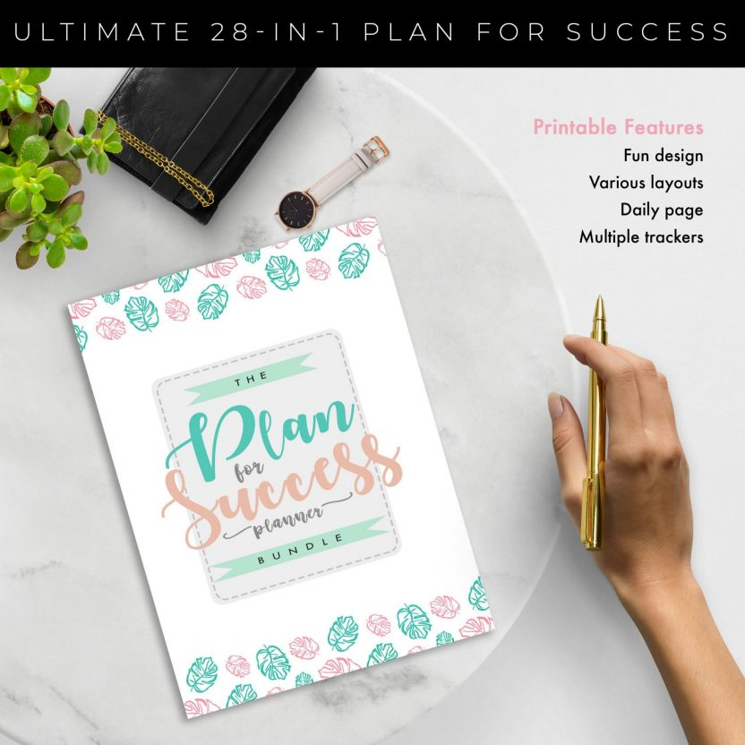 Plan for Success 28 in 1 – Mint