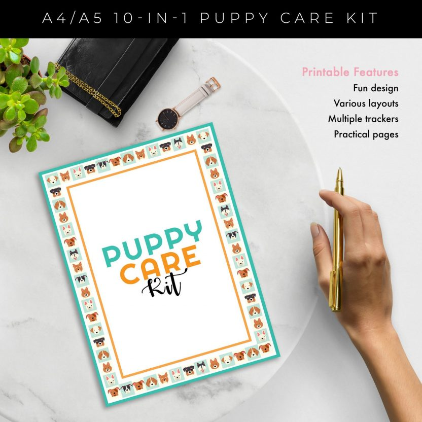 Ultimate 10 in 1 Puppy Care Kit – Mint