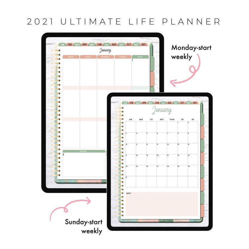 2021 Ultimate Life Planner in Pink Cactus – Portrait